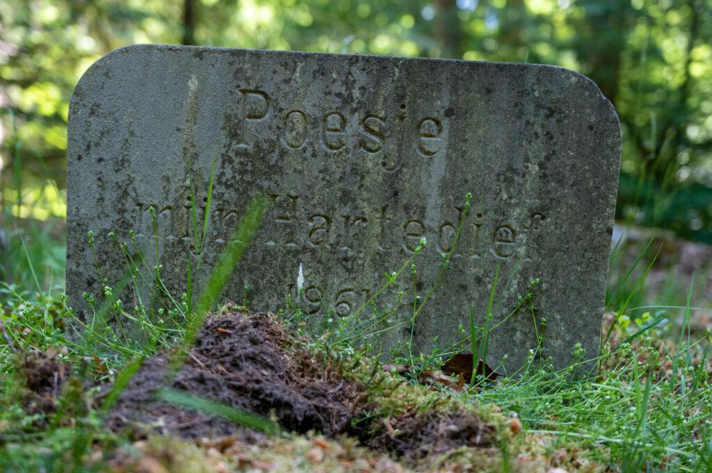 Wandeling Paleis het Loo 28 mei 2020 Servaas Raedts Fotografie 16 1024x681 - Paardenbegraafplaats Kroondomein Het Loo