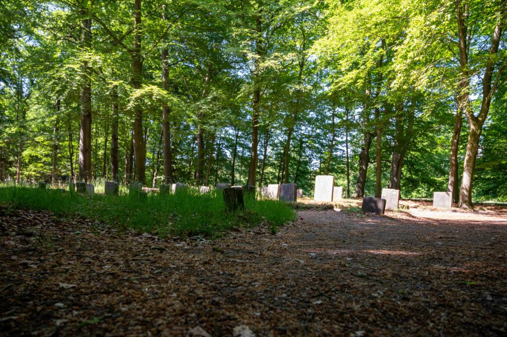 Wandeling Paleis het Loo 28 mei 2020 Servaas Raedts Fotografie 19 1024x681 - Paardenbegraafplaats Kroondomein Het Loo