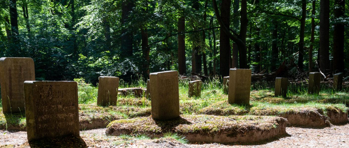 Paardenbegraafplaats Kroondomein Het Loo
