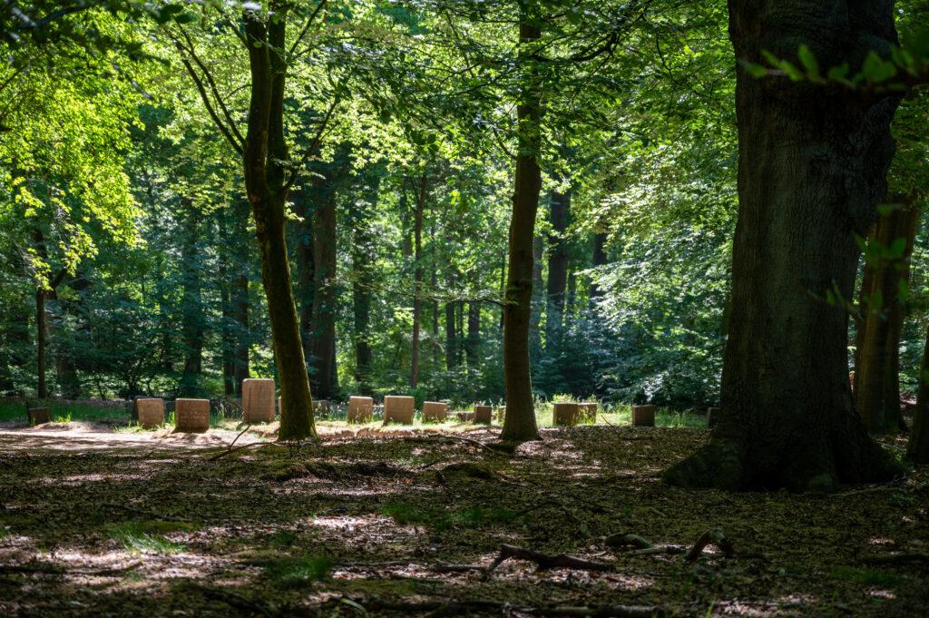 Wandeling Paleis het Loo 28 mei 2020 Servaas Raedts Fotografie 8 1024x681 - Paardenbegraafplaats Kroondomein Het Loo
