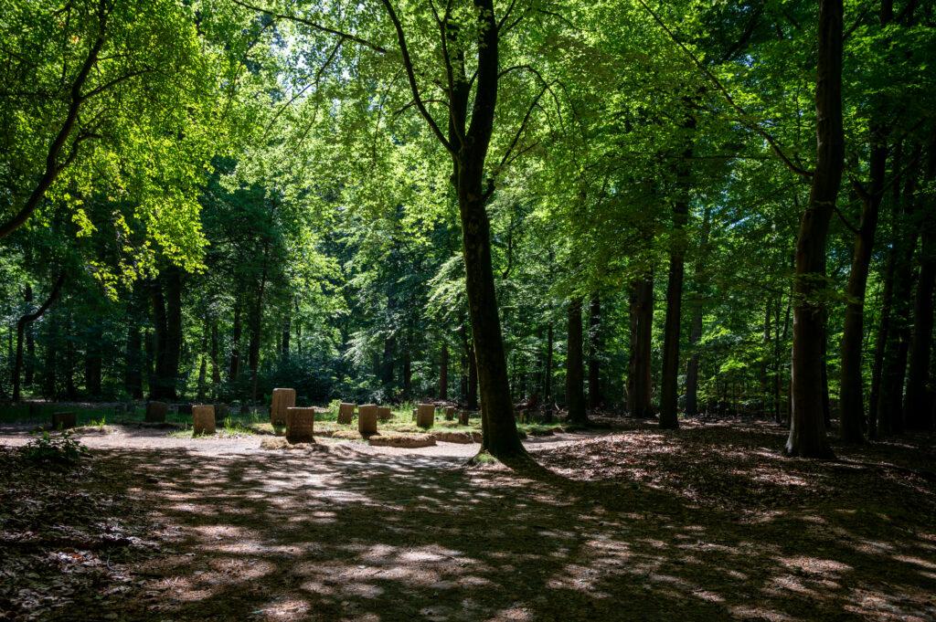 Wandeling Paleis het Loo 28 mei 2020 Servaas Raedts Fotografie 9 1024x681 - Paardenbegraafplaats Kroondomein Het Loo