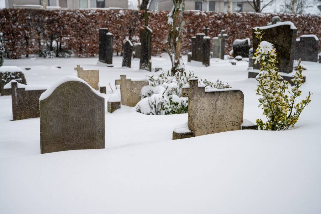 Sneew in Apeldoorn www.fotograaf.camera 17 1024x681 - Sneeuw op een begraafplaats