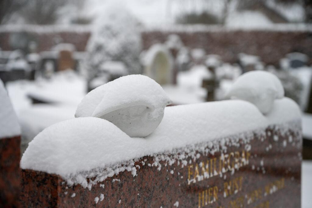 Sneew in Apeldoorn www.fotograaf.camera 27 1024x681 - Sneeuw op een begraafplaats